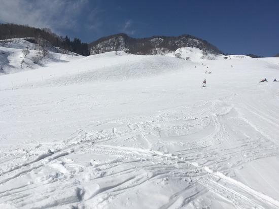 傾斜が緩い|おじろスキー場のクチコミ画像