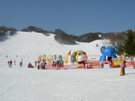 スキーヤーオンリーです|かたしな高原スキー場のクチコミ画像