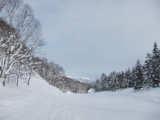 2014/01/18(土) 北海道ルスツリゾートの速報|ルスツリゾートのクチコミ画像