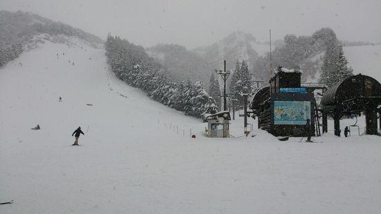 快適バーン多し、スピード注意かな|胎内スキー場のクチコミ画像1