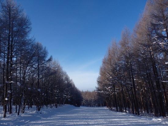 磐梯山がきれいでした 沼尻スキー場のクチコミ画像3