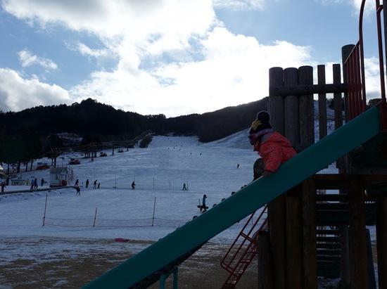 雪ないねー|モンデウス飛騨位山スノーパークのクチコミ画像