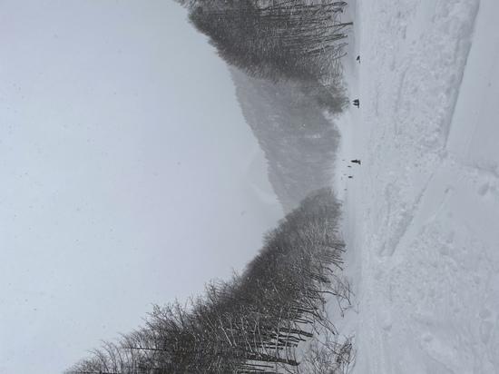 ワンダーランドかたしなレビューキャンペーン はじめての尾瀬岩鞍|ホワイトワールド尾瀬岩鞍のクチコミ画像