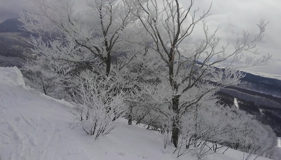 朝イチはいい!|星野リゾート アルツ磐梯のクチコミ画像1