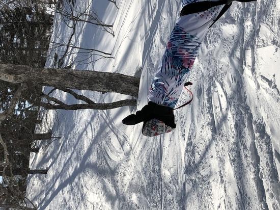 楽しめた|かぐらスキー場のクチコミ画像