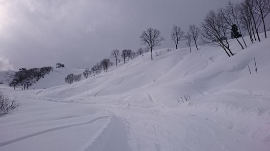 糸魚川シーサイドバレースキー場のフォトギャラリー2