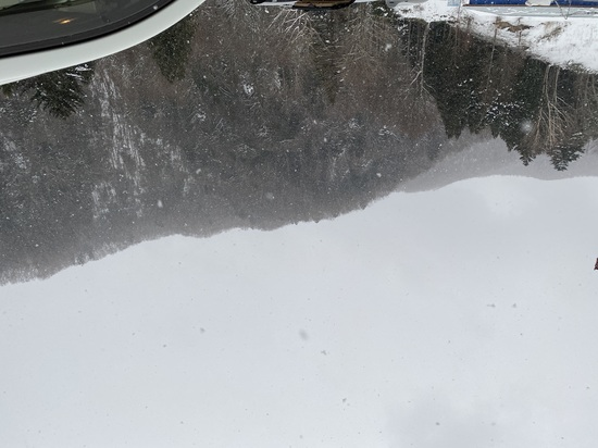 雪が降ってます|丸沼高原スキー場のクチコミ画像