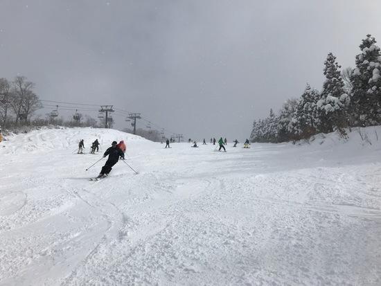 雪質は最高でした。|スキージャム勝山のクチコミ画像3