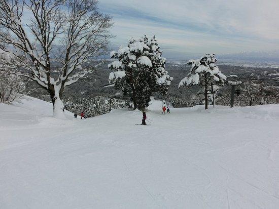 天気もコンディションも最高でした!|となみ夢の平スキー場のクチコミ画像3