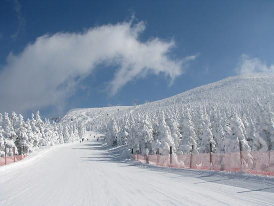 念願の樹氷|蔵王温泉スキー場のクチコミ画像