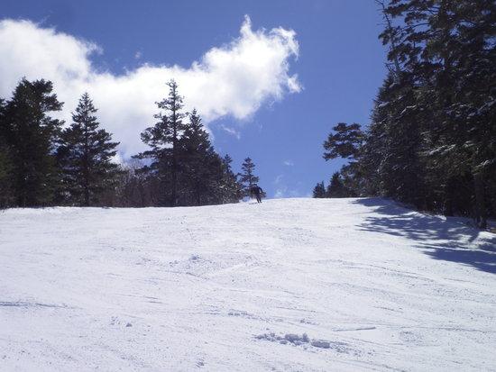 これからがシーズンだと思いますが、間もなく終了です|信州松本 野麦峠スキー場のクチコミ画像