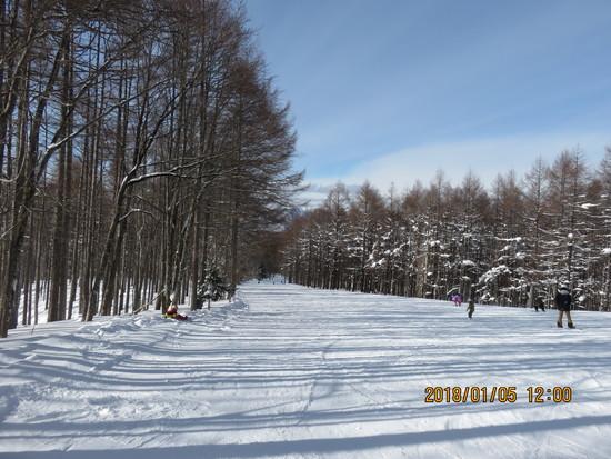 気持ちの良いスキー場|ハンターマウンテン塩原のクチコミ画像