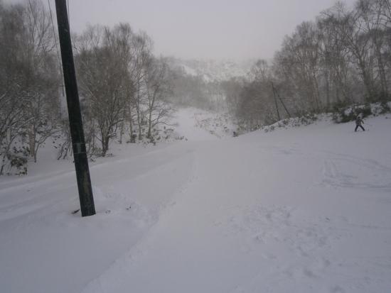 雪質最高です|万座温泉スキー場のクチコミ画像