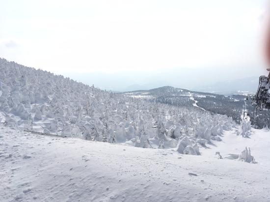 1日では遊びきれないコースの多さ|蔵王温泉スキー場のクチコミ画像