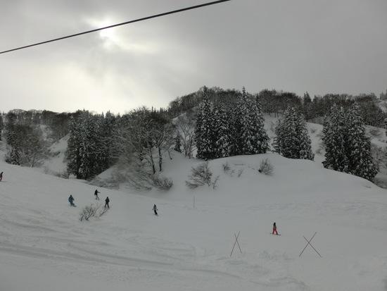 ゲレンデ絶好調|上越国際スキー場のクチコミ画像