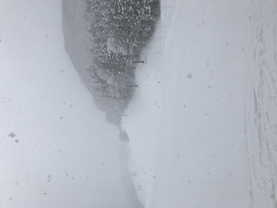 パウダースノー|ホワイトバレースキー場のクチコミ画像2