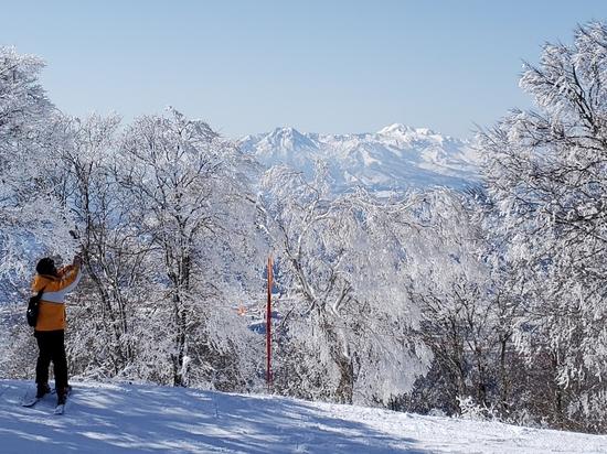 コースが多彩|野沢温泉スキー場のクチコミ画像2