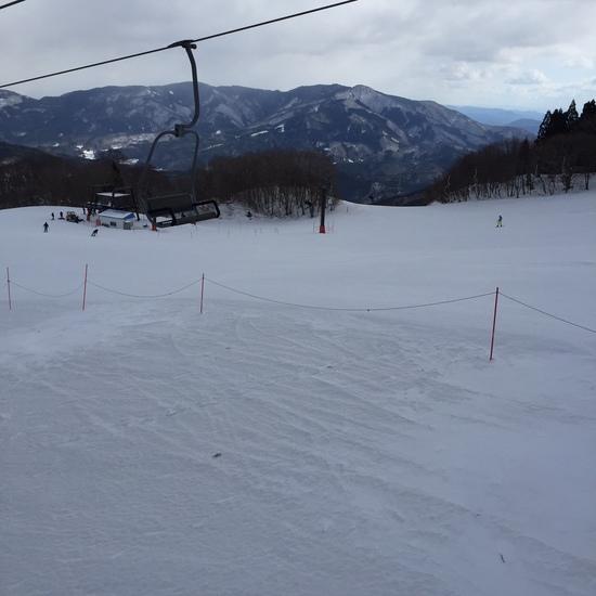 大寒波のハチ北!-11度+暴風で昼切り上げ!|ハチ・ハチ北スキー場のクチコミ画像