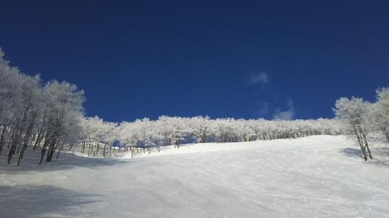 2/11 晴れれば見やすく最高|六日町八海山スキー場のクチコミ画像