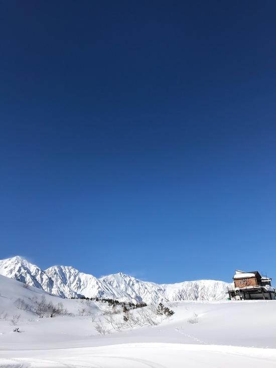 快晴!|白馬八方尾根スキー場のクチコミ画像
