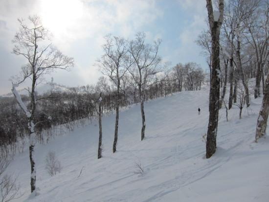 2013/1/25(金) 北海道ルスツリゾートの速報|ルスツリゾートのクチコミ画像