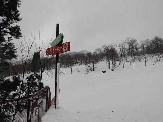 残念な天気の1日|ウイングヒルズ白鳥リゾートのクチコミ画像