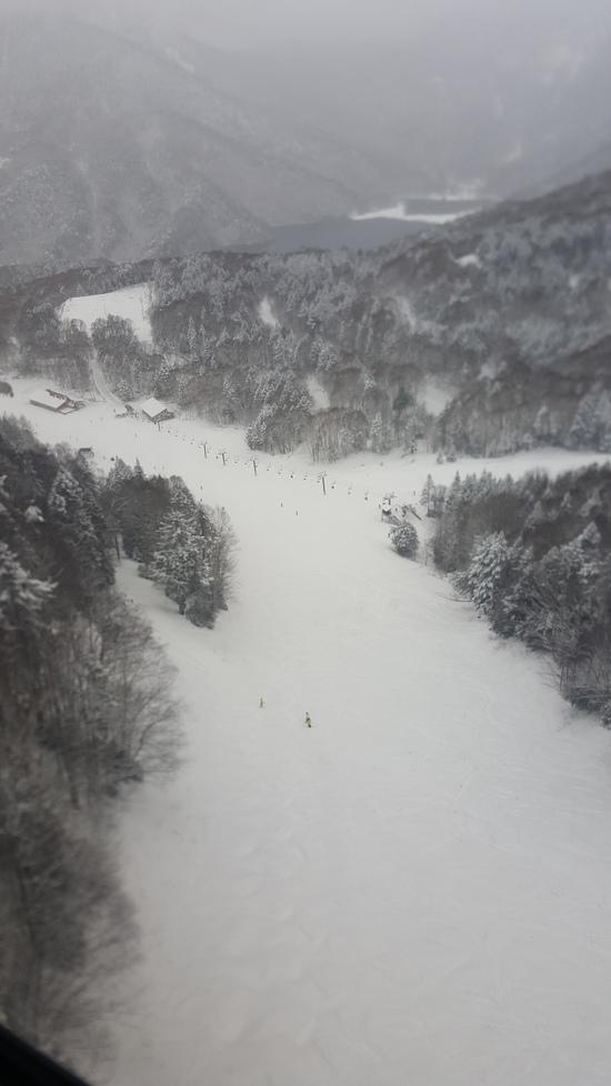 ぱっふぱふのパウダー|丸沼高原スキー場のクチコミ画像