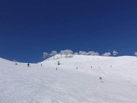 コースが豊富です。|苗場スキー場のクチコミ画像