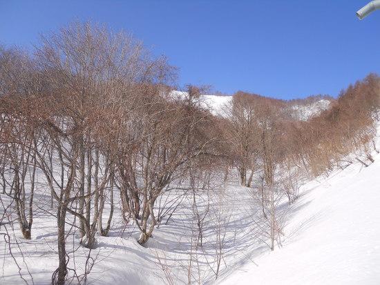 春スキー|ホワイトワールド尾瀬岩鞍のクチコミ画像