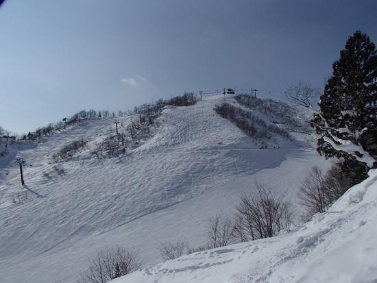 新しいコース|白馬岩岳スノーフィールドのクチコミ画像