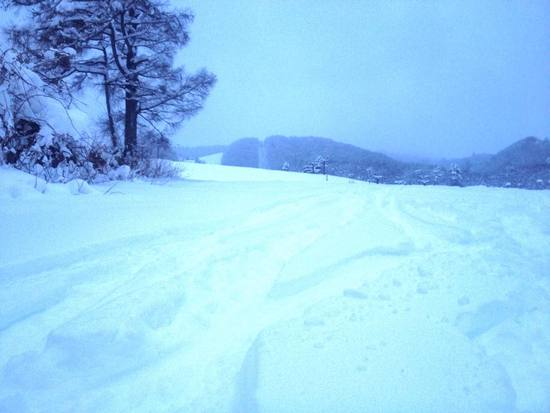 早く積もってほしい|白馬八方尾根スキー場のクチコミ画像
