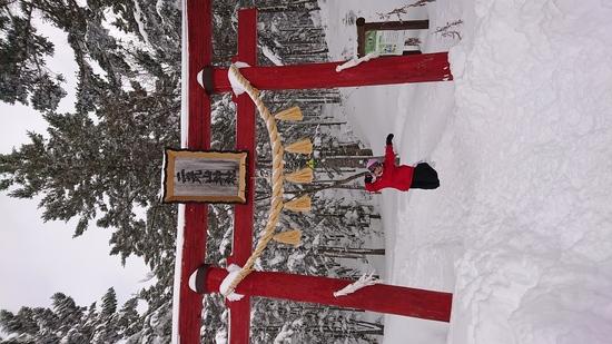 新年初飛び!|丸沼高原スキー場のクチコミ画像