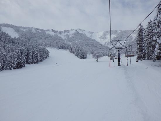 腰の高さの新雪|神立スノーリゾート(旧 神立高原スキー場)のクチコミ画像