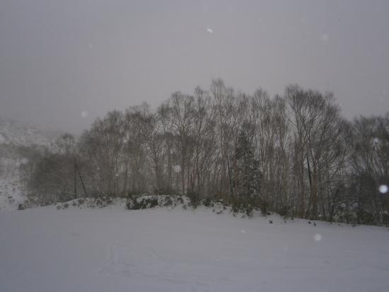 雪質最高です。|万座温泉スキー場のクチコミ画像