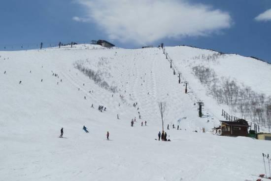 初八方|白馬八方尾根スキー場のクチコミ画像