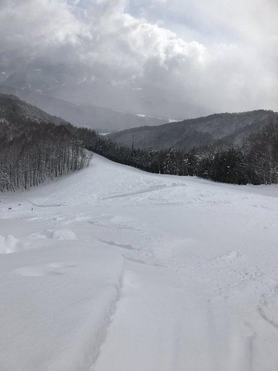 雪質最高でした|かたしな高原スキー場のクチコミ画像